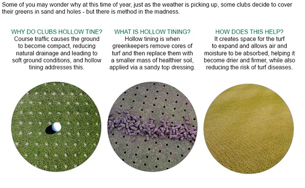 Hollow tining: what's it all about?
