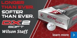Wilson Staff DX2 Soft Balls