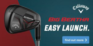 Callaway Big Bertha Irons