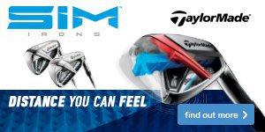 TaylorMade SIM Irons