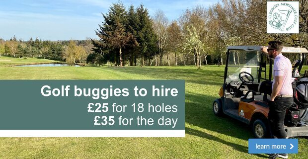 Buggies available