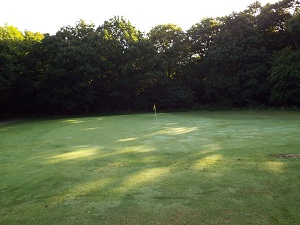 Yellow Hole 2 Green