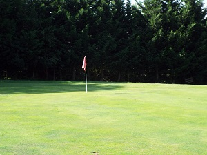 Red Hole 3 Green
