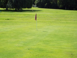 Red Hole 7 Green