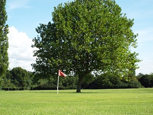 Red Hole 2 Green