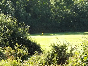 Yellow Hole 8 Tee