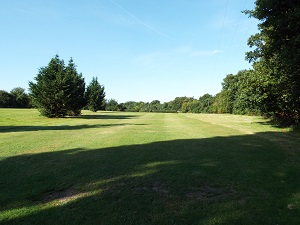 Yellow Hole 7 Tee