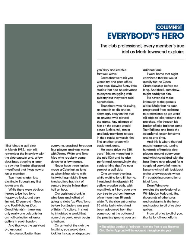 everybodys hero